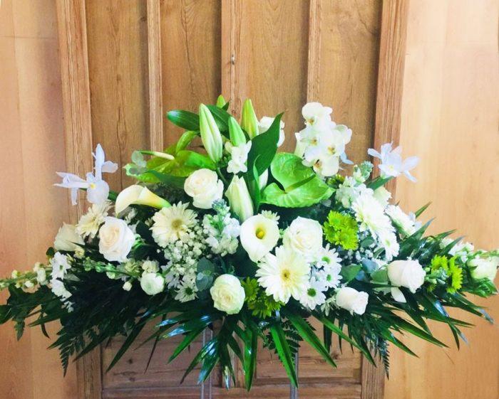 palmatoria-de-flores-blanca